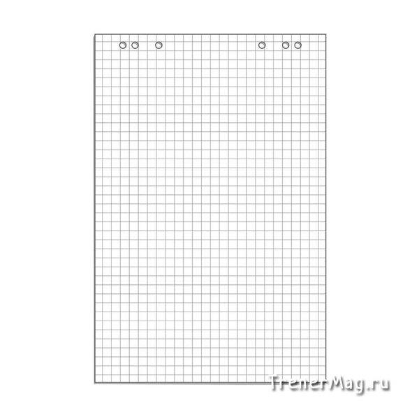 Бумага для флипчартов белая в клетку от 10л. (67,5х98см) для работы тренинг менеджера