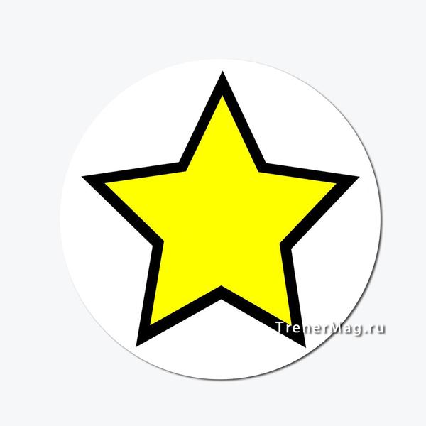 применение Магнитный знак Внимание. Звезда на выставках